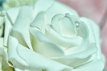 Hochzeit-Isabel-Thomas-Mirabell-Dax-Lueg-Salzburg-_DSC7574-by-FOTO-FLAUSEN