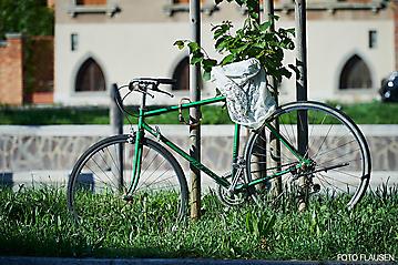 Kunstreise-Venedig-_DSC2958-by-FOTO-FLAUSEN