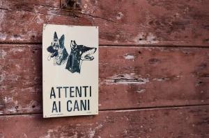 Kunstreise-Valle-Agredo-Dante-Alighieri-KunstBox-DSC2920-by-FOTO-FLAUSEN