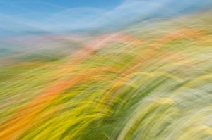 Kunstreise-Valle-Agredo-Dante-Alighieri-KunstBox-DSC3819-by-FOTO-FLAUSEN