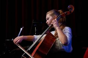 230-2016-11-18-Vielfalt-Markt-Seekirchen-EmailWerk-KunstBox-Trio-Just-We-Konzert-_DSC4977-by-FOTO-FLAUSEN