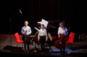 258-2016-11-18-Vielfalt-Markt-Seekirchen-EmailWerk-KunstBox-Trio-Just-We-Konzert-_DSC5082-by-FOTO-FLAUSEN