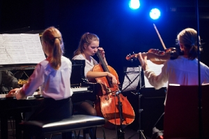260-2016-11-18-Vielfalt-Markt-Seekirchen-EmailWerk-KunstBox-Trio-Just-We-Konzert-_DSC5099-by-FOTO-FLAUSEN